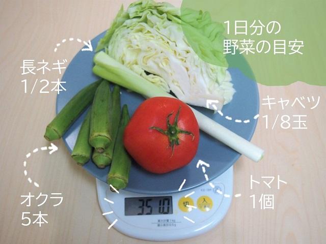 野菜350gの目安