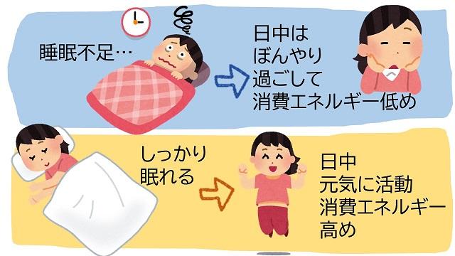 睡眠とカロリー消費の関係
