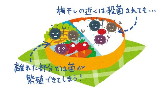 梅干しの殺菌作用