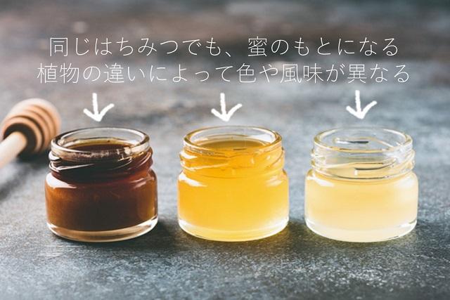 ハチミツの色の違い