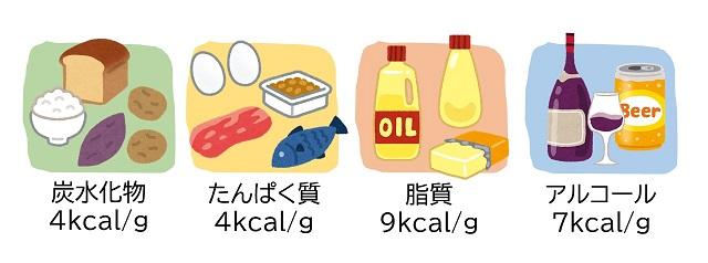 栄養素のカロリー