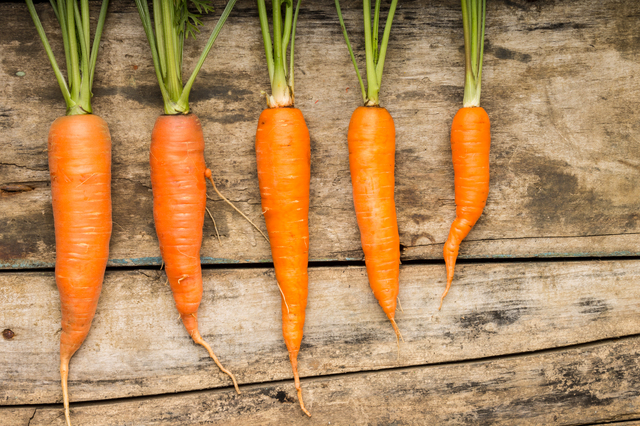 野菜の比較
